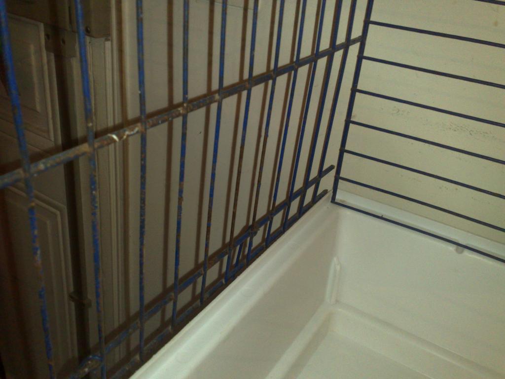 Quelques cages à céder. 065-23d6c12